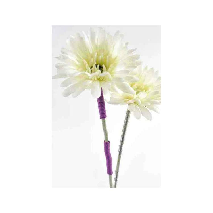 Fleur gerbera avec longue tige m ga f te - Fleur blanche longue tige ...