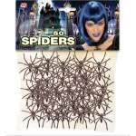 50 araignées noires plastique